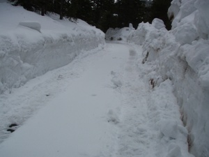 Unplowed_trail